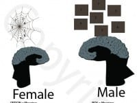Male-vs-Female